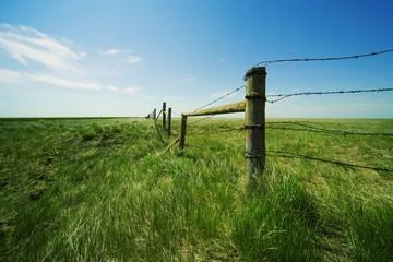 заявление на изменение вида разрешенного использования земли