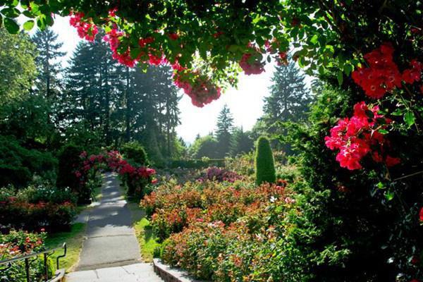 можно ли выйти из садового товарищества