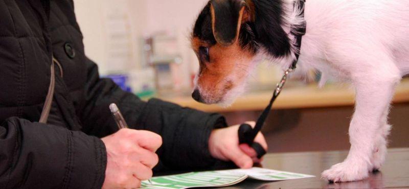 содержание животных в коммунальной квартире закон