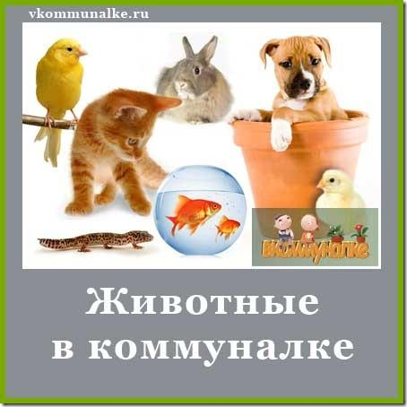 животные в коммунальной квартире закон